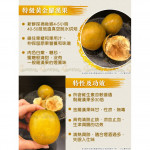 golden luo han guo 大黄金罗汉果 4pcs