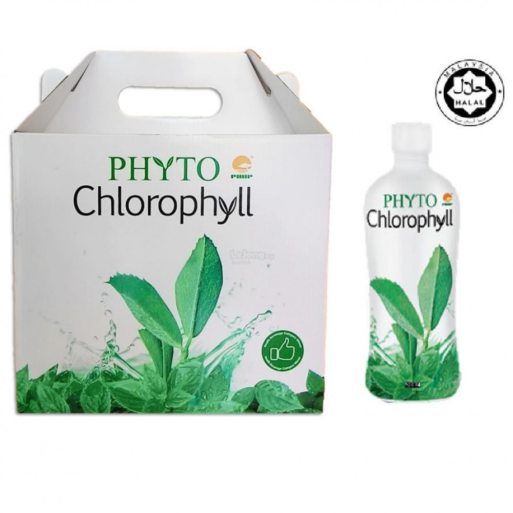 PHHP PHYTO CHLOROPHYLL 叶绿素 500ml