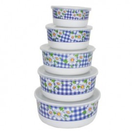 image of Plastic Food Container (5 in 1)
