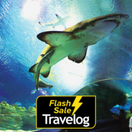 image of Kuala Lumpur: Aquaria KLCC Admission Ticket