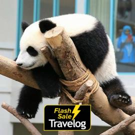 image of Kuala Lumpur: Zoo Negara Admission Ticket