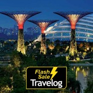 image of Singapore: Gardens by the Bay Admission Ticket