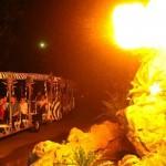 Singapore: Singapore Night Safari Admission Ticket