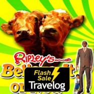 image of Pattaya: Ripley's Believe It or Not! Package