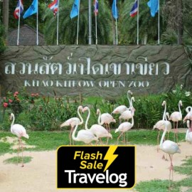 image of Chonburi : Khao Kheow Open Zoo