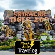 image of Chonburi: Sriracha Tiger Zoo Admission Ticket