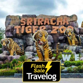 image of Chonburi: Sriracha Tiger Zoo Admission Ticket