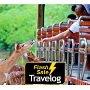 image of Chiang Mai: Chiang Mai Night or Day Safari Admission Ticket