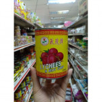 Rose Brand Lychees in Heavy Syrup 玫瑰牌黑葉荔枝 567g
