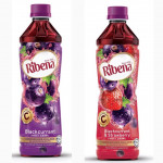 【450ml】Ribena PET Bottle