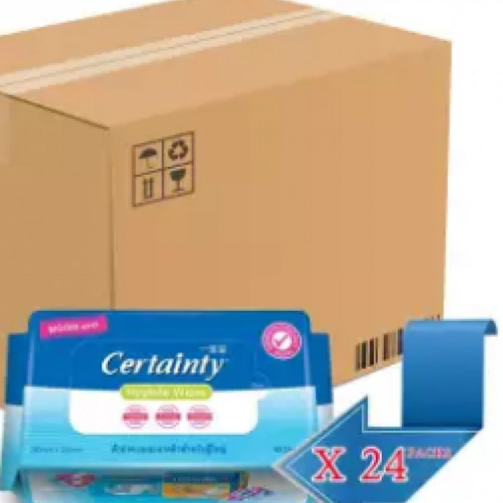 Certainty Adult Hygiene Wipes (40 Sheets) 24 Packs