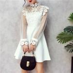 Collar perspective flower lace hollow stitching mesh dresses 钩花蕾丝镂空网纱收腰连身裙