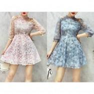 image of Woman's mesh lace dress 网纱显瘦蕾丝钩花连衣裙