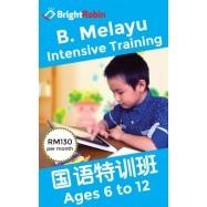 image of Bright Robin - Bahasa Malaysia