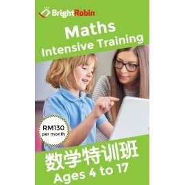image of Bright Robin - Math Intensive Training