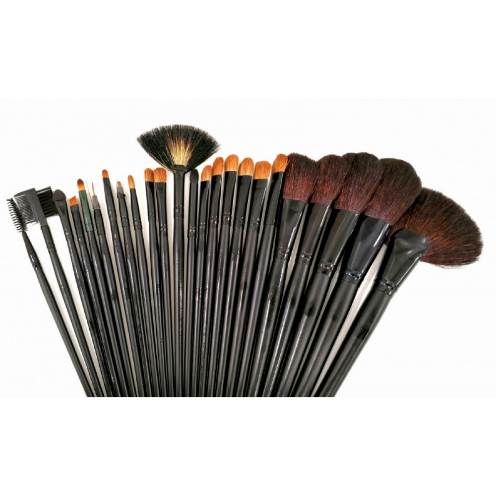 Mega 24pcs Brush Set