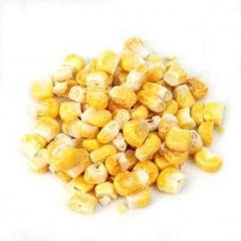 image of Freeze Dry Sweet Corn (60Gram)