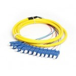 Single Mode SC 12 Core Pigtail 1.5 meter Fiber Cable (S126)