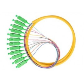 image of Single Mode SC/ APC 12 Core Pigtail 1.5 meter Fiber Cable (S224)