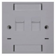 image of CAT 5e/ CAT 6e Double Face Plate (S022)