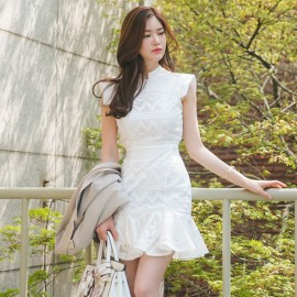 image of Stand Collar Lace Short Sleeve Slim Fit Ruffled Bag Hip Dress