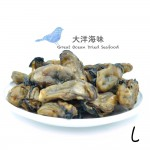 Korean Dried Oyster Size L 韩国蠔干 L (100g-500g)