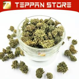 image of [50g] Panax Tseng/Notoginseng flowers | 田七花花茶 Teh Bunga Notoginseng -Malaysia -Flower Tea -Teh Bunga