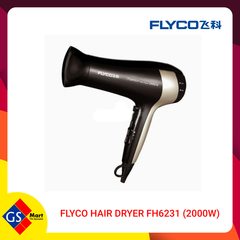 Flyco Hair Dryer FH6231 (2000w)