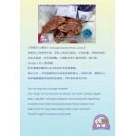 cottage cheese pork jerky 茅屋芝士猪肉片 homemade pet treats