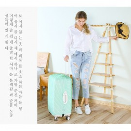 image of *Ready Stock* Korea Travel Luggage Suitcase Case Carrier Bag Cover TSB