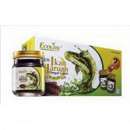 image of Ecolite Pati Ikan Haruan & Gamat (70ml X 6 Bottles) [Free 2 Bottles]