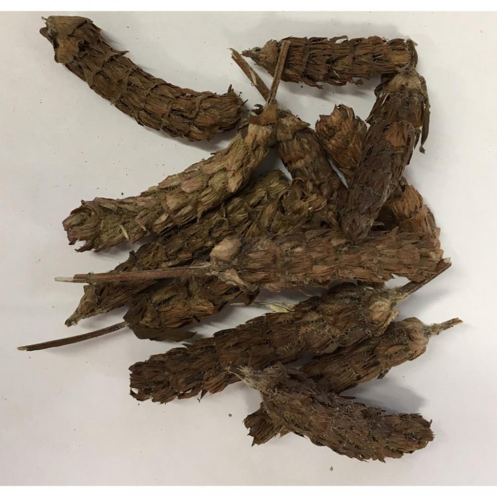 Prunella Vulgaris (Xia Ku Cao)夏枯草 100G