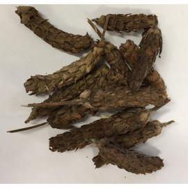 image of Prunella Vulgaris (Xia Ku Cao)夏枯草 100G
