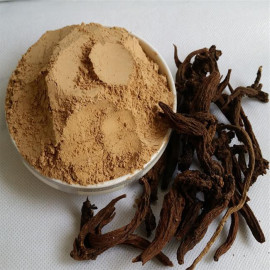 image of Salvia Powder 丹参粉 50G
