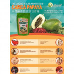 Albica´S Carica Papaya Tea / Teh Betik (Vegetarian) Halal 素木瓜茶(4gmX25'S)