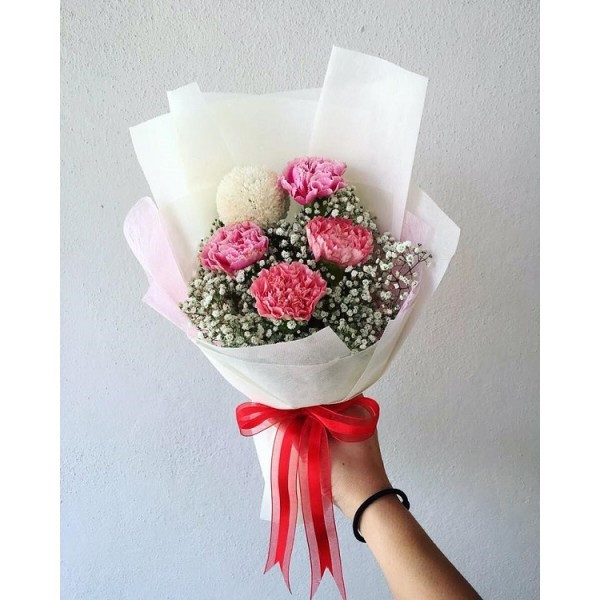 image of Carnation Bouquet (M)