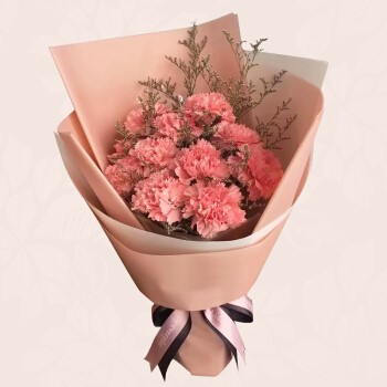 image of Carnation Bouquet (L)