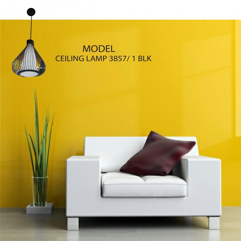 Ceiling Lamp 3857/1 BLK