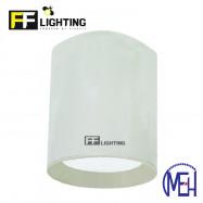 image of FF Lighting LED Lithium (LI) Surface Downlight 12W White Body Day Light/Warm White