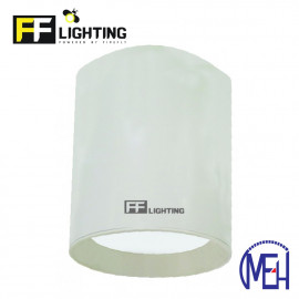 image of FF Lighting LED Lithium (LI) Surface Downlight 12W White Body Day Light/Warm White