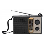 golon musiz player radio RX-BT17/BT18