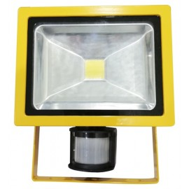image of Firefly LED Flood Light with Sensor 30W Warm White