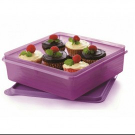 image of B2B Snack Stor (1) 2.9L