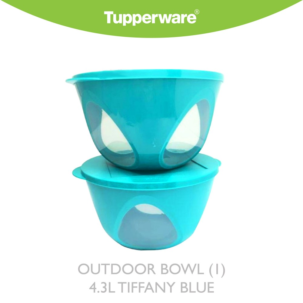 Tupperware Outdoor Bowl (1) 4.Ll Tiffany Blue