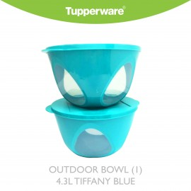 image of Tupperware Outdoor Bowl (1) 4.Ll Tiffany Blue