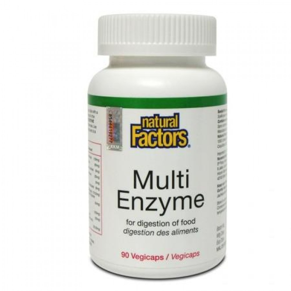 NATURAL FACTORS MULTI ENZYME 90S