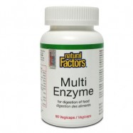 image of NATURAL FACTORS MULTI ENZYME 90S