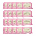 Inabella Fermini Wipes 20's 20 packs [Bundle]