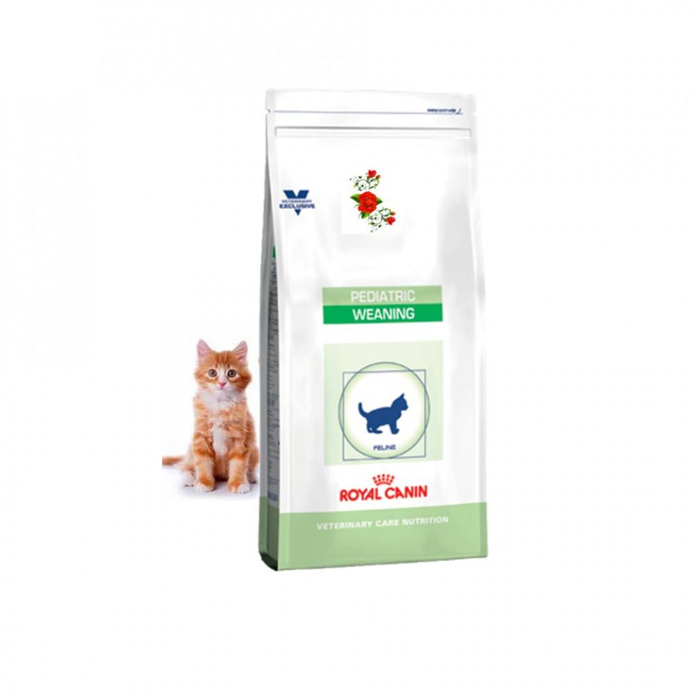 Royal Canin Kitten Pediatric Weaning 400G