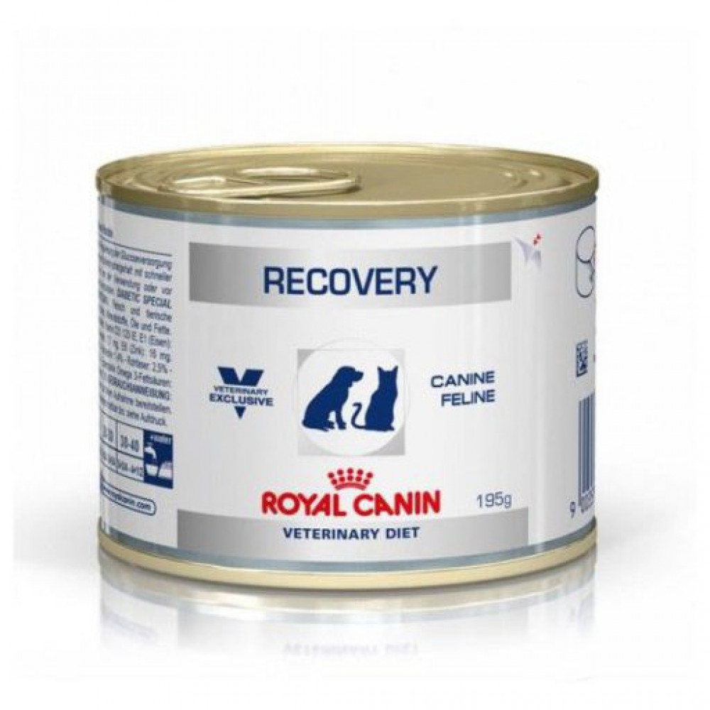 Royal Canin Recovery Canned Food For Cats & Dogs 156g X 6 Canned